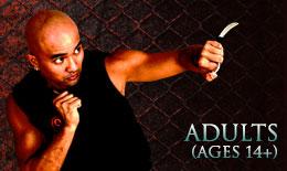 Adult martial arts / self-defense classes